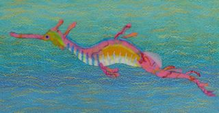 Sea Dragon - small photo