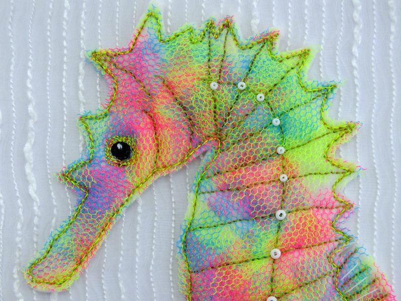 Seahorse close up - small image