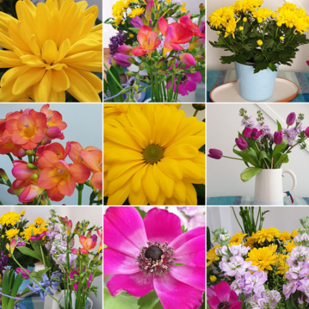 Colourful_Flowers_Collage